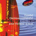 LAURENCE BOURDIN - CIE GRAIN DE SON «Essai Electroacoustique Pour Vielle À Roue» DVD - Cie Grain de Son (2012) Bravo Trad'Mag